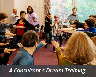 Consultant Trainings