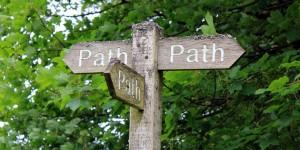 PathBlog_mini