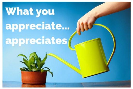 What you appreciate